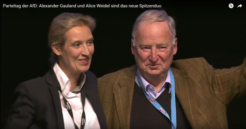 Weidel-Gauland (2)