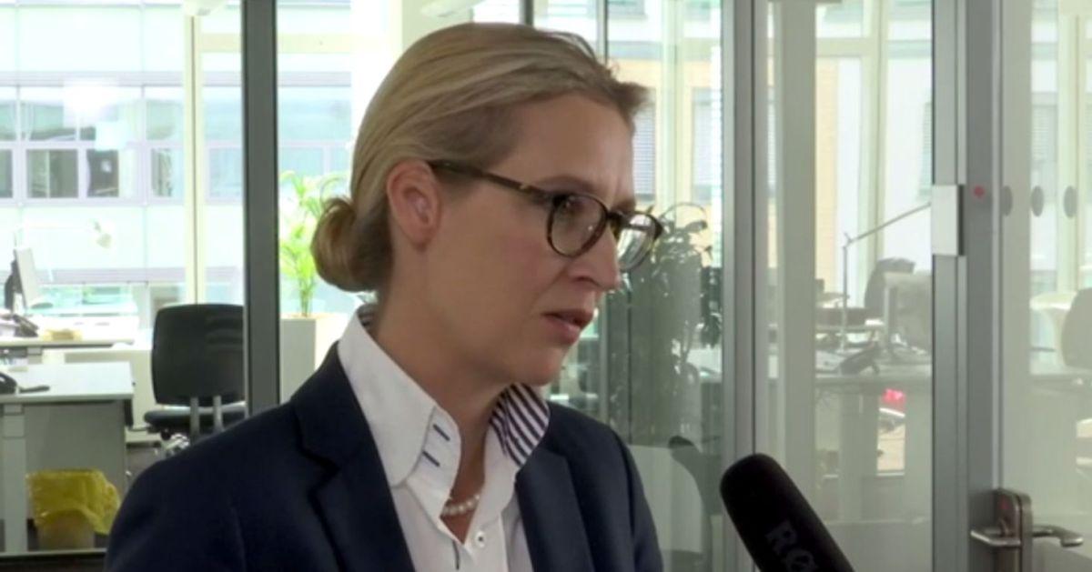 """Alice Weidel: Wir werden einen Unterschungsausschuss """"Angela Merkel"""" initiieren"""