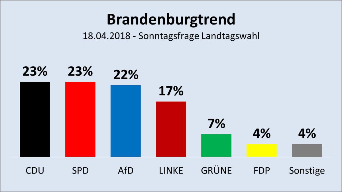 AfD bald auch in Brandenburg die Nr. 1?