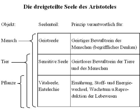 dreigeteilte Seele (Aristoteles) (2)