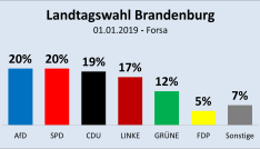 AfD in Brandenburg bereits auf Platz eins