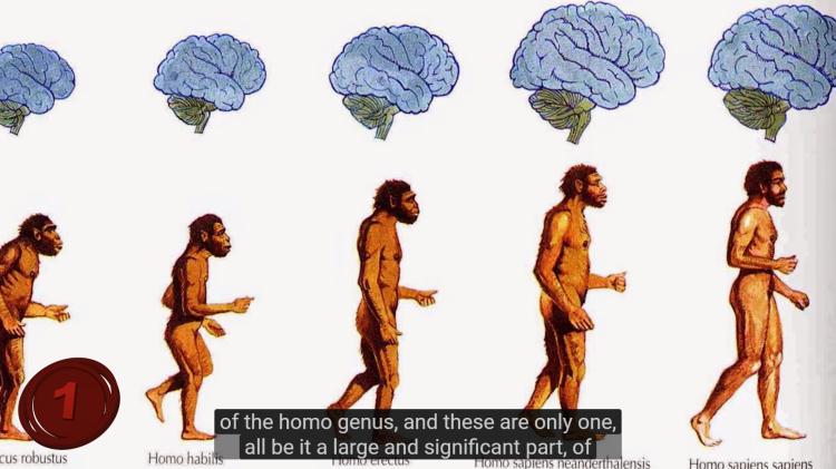 homo-habilis- erectus-sapiens
