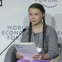 Greta Thunberg: Marionette des linken Mainstreams