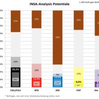 Warum niemand mit der AfD koalieren wird