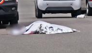Stuttgart: Mann mit Schwert oder Machete auf offener Straße förmlich niedergemetzelt