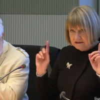 Wie der Petitionsausschuss des Bundestages seit einem Jahr die Erklärung 2018 abblockt