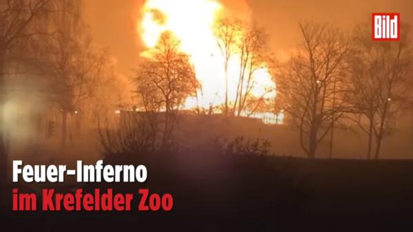 Zoo-Krefeld.png