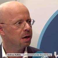 AfD verliert in Brandenburg fast ein Viertel ihrer Anhänger