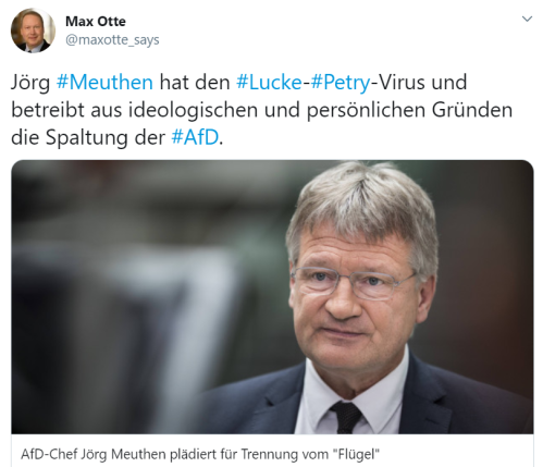 Meuthen Lucke-Petry-Virus