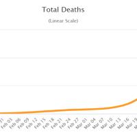Eine Million Corona-Infizierte, mehr als 51.000 Tote