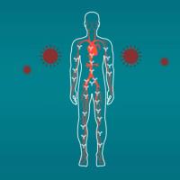 RKI-Studie: 98,7 Prozent ohne Antikörper, Covid-19-Letalität evtl. zwei- bis dreimal so hoch