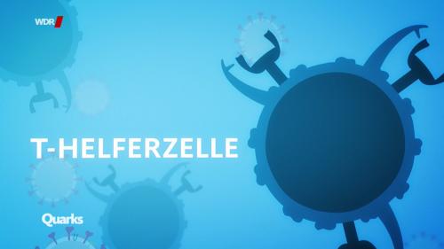 T-Helferzelle