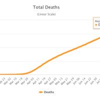 COVID-19: Zahl der Todesfälle steigt auf über 750.000