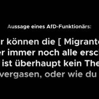 AfD-Sprecher: Wir können die Migranten nachher immer noch alle erschießen oder vergasen