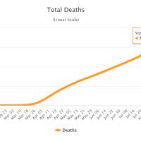 Zahl der COVID-19-Todesfälle steigt auf über 900.000